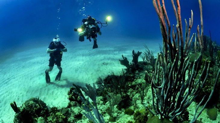 Eine Welt unter Wasser